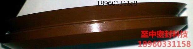 氟橡胶VA形水封
