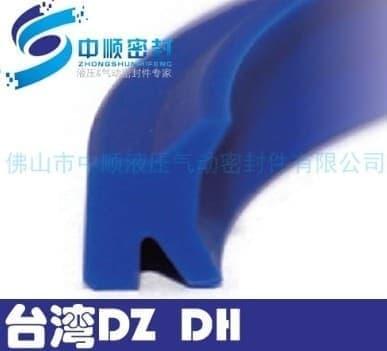 台湾正品DZ DHS防
