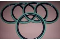 GSF孔用格莱圈规格