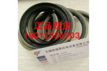 IKO油封DS16243双唇铁壳价格